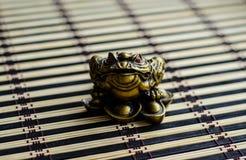 Chinesische Kröte auf Bambusmatte Lizenzfreies Stockfoto