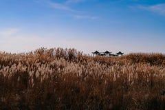 Chinesische Landschaft lizenzfreies stockbild