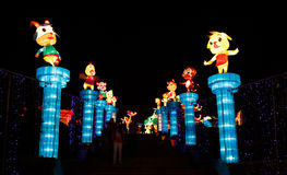 Chinesische Laterne Show lizenzfreie stockbilder