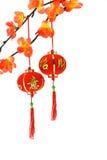 Chinesische Laternen des neuen Jahres und Pflaumeblüten Stockfoto