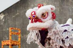 Chinesische neue Jastimme Penangs Malaysia, das Löwe danse Lizenzfreie Stockfotografie