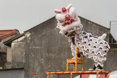 Chinesische neue Jastimme Penangs Malaysia, das Löwe danse Stockbilder