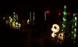 Chinesische Pandalaterne lizenzfreies stockfoto