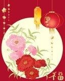 Chinesische Pfingstrose Stockbild