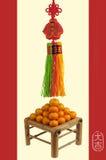 Chinesische Serie des neuen Jahres Lizenzfreie Stockbilder