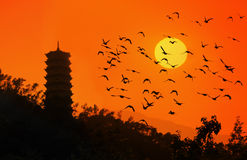 Chinesische Tempel und einige Vögel Stockfotografie