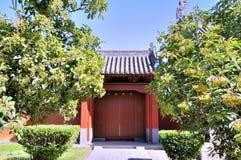 Chinesische Tempeltür abgedeckt durch grüne Bäume Lizenzfreie Stockfotos