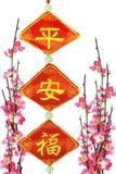 Chinesische Verzierungen des neuen Jahres und Kirschblüte Lizenzfreie Stockbilder