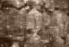Chinesische Vogel-Rahmen - Weinlese-Art Lizenzfreies Stockbild