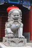 Chinesische Wächterlöwen Lizenzfreie Stockbilder
