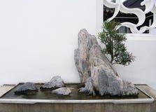 Chinesischer Bonsaisfelsen Stockbild