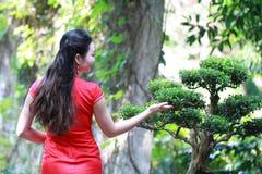 Chinesischer cheongsam Modellstand nahe bei Bonsais Stockbilder
