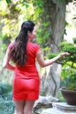 Chinesischer cheongsam Modellstand nahe bei Bonsais Stockfotos