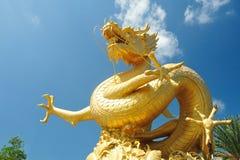 Chinesischer Drache auf blauem Himmel Lizenzfreies Stockfoto