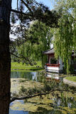 Chinesischer Garten Lizenzfreie Stockfotografie
