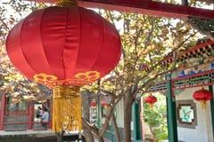 Chinesischer Garten - rote Laterne Lizenzfreies Stockfoto