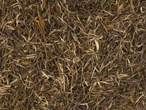 Chinesischer Gebräuhintergrund des grünen Tees (Xinyang Maojian) lizenzfreie stockfotos