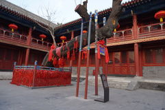 Chinesischer Gelehrtbaum Aceint von Peking Dongyue Tao Temple Lizenzfreie Stockfotos