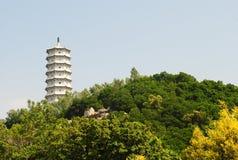 Chinesischer glücklicher Kontrollturm Lizenzfreie Stockfotos