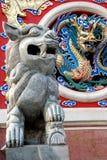 Chinesischer Löwe Stockfotografie