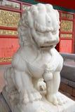 Chinesischer Löwe Lizenzfreie Stockfotos