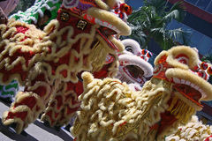 Chinesischer Löwe-Tanz Lizenzfreies Stockfoto