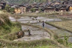 Chinesischer Landwirtpflugboden im Reis fängt nahe Minderheitsdorf auf Stockfotos