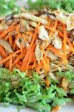 Chinesischer Nudelaufruhr mit Gemüse, Tofu, Pilz Vegetarierlebensmittel Stockbilder