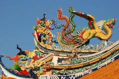 Chinesischer Schwan Lizenzfreies Stockfoto