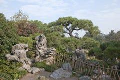 Chinesischer Stein und Kiefer Stockbilder