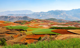 Chinesischer Terrassenbauernhof mit rotem Boden Stockfoto