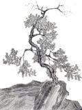 Chinesischer Tintenpinselzeichnungsbaum Stockfotos