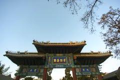 Chinesisches altes Erinnerungstor und alte chinesische Schriftzeichen Lizenzfreie Stockbilder