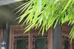 Chinesisches antikes Haus, das alte Architektur Bambusblätter verziert, ist Stockfotos