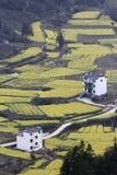 Chinesisches Bergdorf mit Rapssamenblumenblüte Lizenzfreies Stockfoto