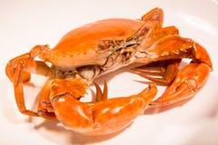 Chinesisches Fleisch - marinierte Krabben Lizenzfreie Stockfotografie