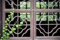 Chinesisches hölzernes Fenster mit Grün Lizenzfreie Stockfotografie