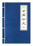 Chinesisches Kung Fu stock abbildung