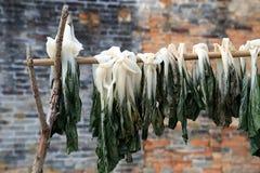 Chinesisches Landleben und sonnengetrocknetes Gemüse Stockfotografie