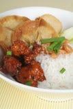 Chinesisches Nahrung-Süßes u. saures Schweinefleisch Stockfotografie