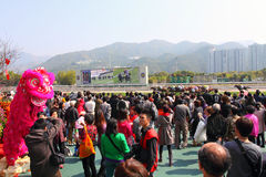 Chinesisches neues Jahr Raceday 2011 Stockfotos