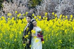 Chinesisches Paarhochzeit portraint auf dem Coleblumengebiet Stockbilder