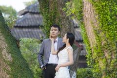 Chinesisches Paarhochzeit portraint vor alten Bäumen und Altbau Stockfotos