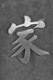Chinesisches Schriftzeichen - HAUPT Lizenzfreies Stockbild