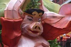 Chinesisches Schwein lizenzfreie stockbilder