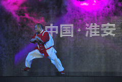 Chinesisches taiji kung fu Spiel Lizenzfreie Stockfotos