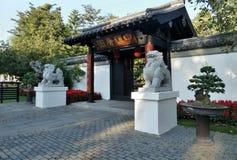 Chinesisches Tor und schützen Löwe Stockfotografie