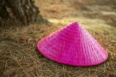 Chinesse pink girl hat over the forest floor Stock Images