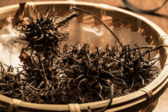 Chinesse Tea Da Hong Pao or Conifer Cone in a wooden basket. Stock Image