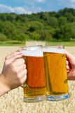 Chink beer glases Stock Image
